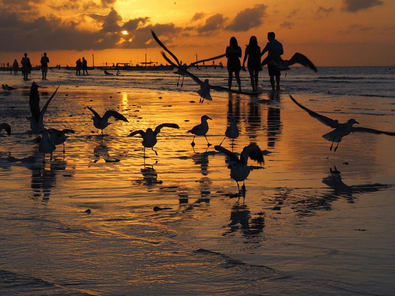 Reisefotografie Urlaubsfotos Tipps | Sonnenuntergang auf Isla Holbox