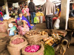 Gruppenreisen für Alleinreisende & Erlebnisreisen I Kolumbien Ablauf Tag 5 Besuch des einheimischen Marktes in Silvia