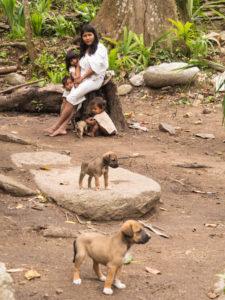 Gruppenreisen für Alleinreisende & Erlebnisreisen I Kolumbien Ablauf Tag 14 Wanderung durch den Tayrona Park und Besuch der Kogi Indianer