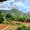 Kegelhügel Landschaft (Mogotes) im Viñales Tal auf Kuba - Gruppenreisen für Alleinreisende & Erlebnisreisen | QUERIDO MUNDO