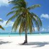 Gruppenreisen für Alleinreisende I Mexiko traumhafter Strandtag auf der Isla Mujeres