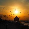 Gruppenreisen für Alleinreisende I Mexiko Sonnenuntergang auf der Isla Holbox